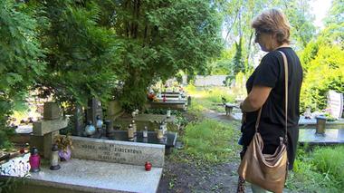 Chciała pochować matkę. Na przeszkodzie stanęła tuja